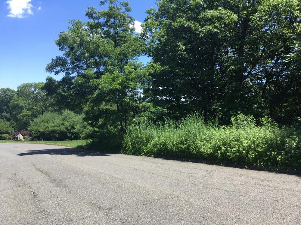 29 South Ridge Road, Pomona, NY, 10970 United States